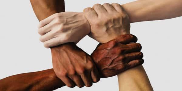 معلومات عن التمييز العنصري مجلة رجيم
