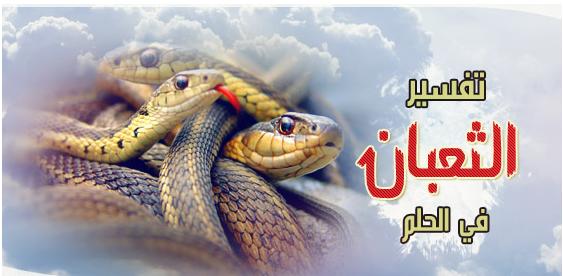 تفسير الثعبان والحيه في الحلم مجلة رجيم