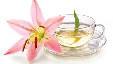 الشاي الأبيض الصيني