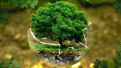 موضوع حول البيئة بالعربية