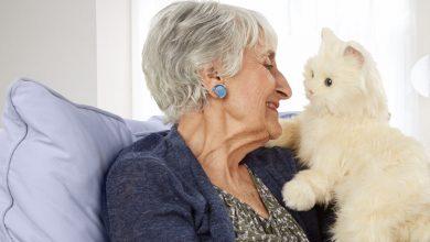 صورة كبار السن مع الحيوانات الأليفة