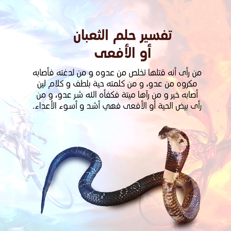 تفسير حلم الثعبان في المنام مجلة رجيم