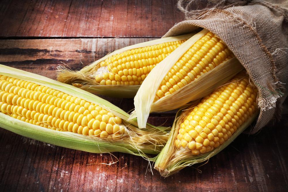 فوائد الذرة مجلة رجيم