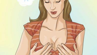 الصدر الكبير