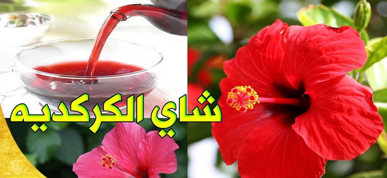 Photo of عصير الكركديه للتنحيف , تجربتي مع الكركديه للتخسيس