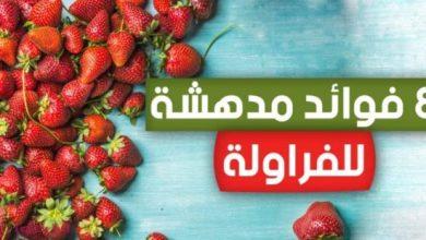 Photo of فوائد الفراولة الصحية , فوائد الفراولة للبشرة