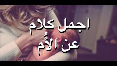 اجمل كلام عن الام