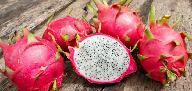 فوائد فاكهة التنين .
