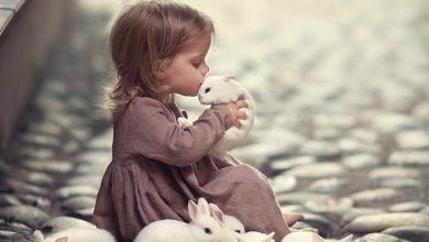 تاثير الحيوانات على الطفل