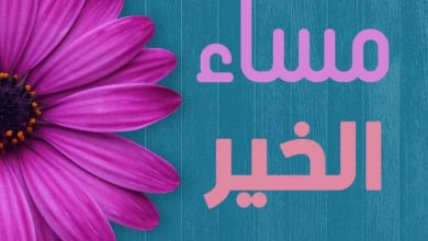 Photo of خواطر مساء الخير