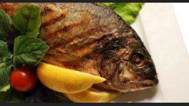 الفوائد الصحية لتناول الأسماك