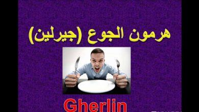 Photo of ما هو هرمون الجوع وما هي علاقته بتقوية الدماغ