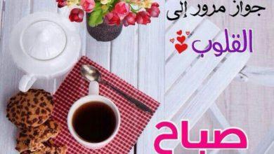Photo of أجمل عبارات صباح الخير , رسائل صباحية جديدة , اجمل رسائل صباح النور