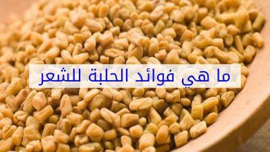 Photo of فوائد الحلبة للشعر و كيفية استخدامها