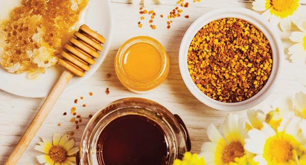 فوائد العسل مع طلع النخل