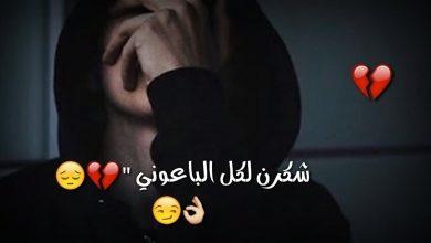 Photo of حالات واتس قصيره قويه