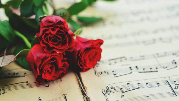 ورود رومانسية حمراء