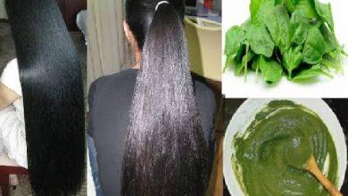 السبانخ لنمو الشعر
