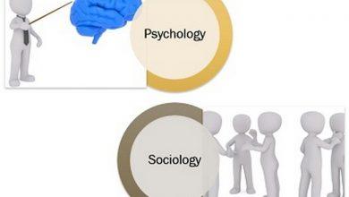 اذكر بالتفصيل نوع المجال في علم النفس وعلم الاجتماع