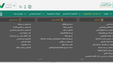 خطوات الاستعلام عن قضية.. بوابة ناجز