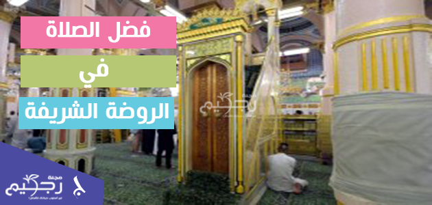 فضل الصلاة في الروضة الشريفة كم تعادل الصلاة في المسجد النبوي مجلة رجيم