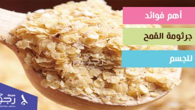 أهم فوائد جرثومة القمح للجسم