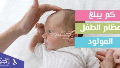 كم يبلغ عظام الطفل المولود