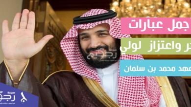 العهد محمد بن سلمان