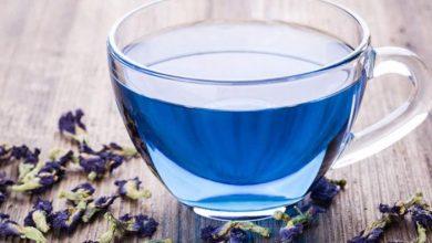 مذاق الشاي الازرق