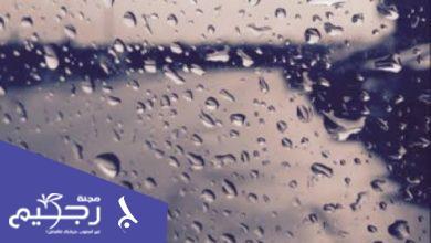 عبارات عن الشتاء والمطر