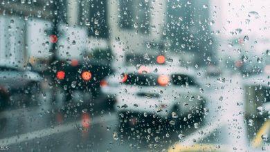 كلمات عن المطر والعشق