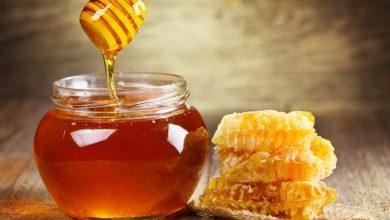 ماذا يحدث للجنين اذا تناولت الحامل العسل