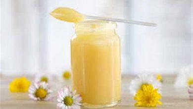 فوائد غذاء ملكات النحل للخصوبة للرجال